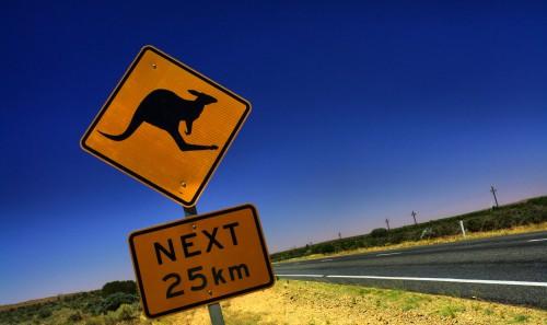 Tour Guidato - Amazing Australia