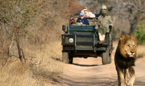 Tour Guidato - Meraviglie Sudafricane